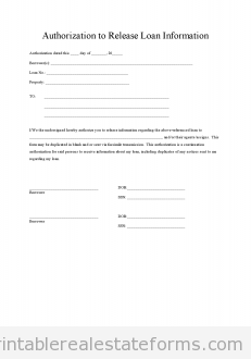 loan authorization
