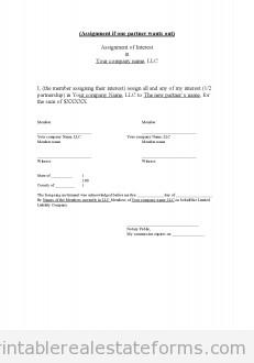 Assignment of llc Interest