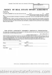 Affadavit & Memorandum of Option 1 Party Agreement