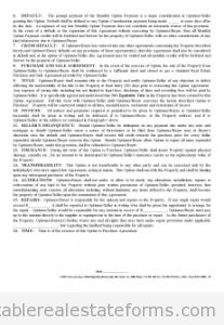Option Agreement